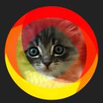 Красочный hover-эффект для изображения (фото)