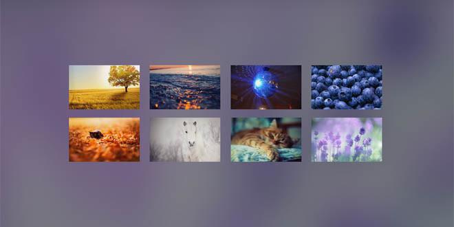 Галерея с эффектом размытия фона (blur effect)