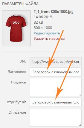 SEO оптимизация страниц и записей сайта WordPress